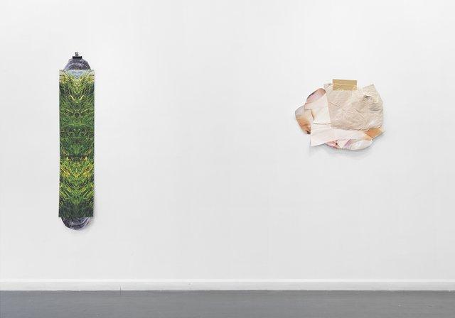 "Kelly Jazvac, ""Hedgehog Bathtime,"" 2013"