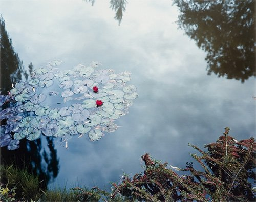 "Stephen Shore, ""Giverny, France, 1977–1982 (from The Giverny Portfolio),"" 1977–82"