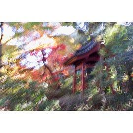 "David Kunin, ""Autumn Leaves,"" nd"