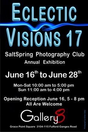 Eclectic Visions 17 Invite