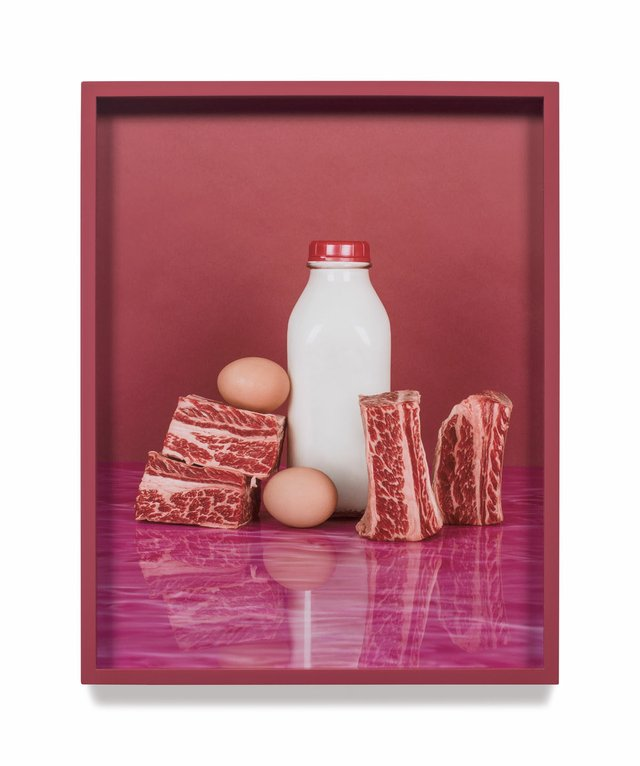 "Elad Lassry, ""Short Ribs, Eggs,"" 2012"