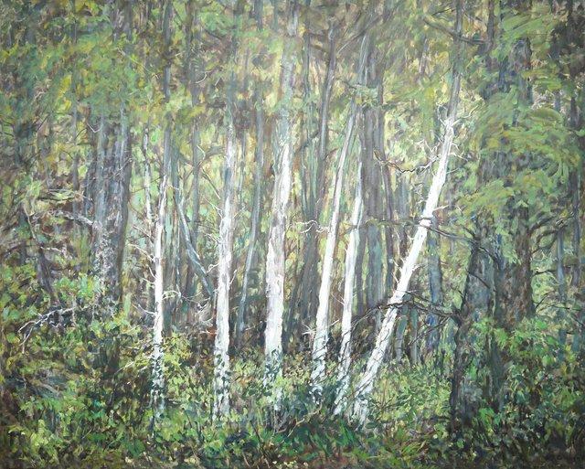 "Anne Meggitt, ""Woodland Discovery,"" 2014"