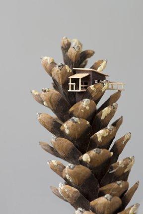 "Julya Hajnoczky, ""Pinecone cabin,"" 2017"