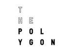 The Polygon.jpg