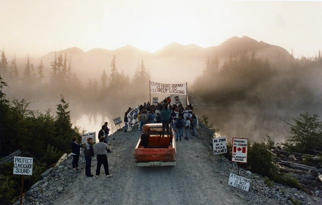 Clayoquot Sound logging protesters gather at daybreak in 1993 at the Kennedy River Bridge in preparation for another day of confrontations with loggers and RCMP enforcing a Supreme Court injunction. Photo by Mark Van Manen/Vancouver Sun.