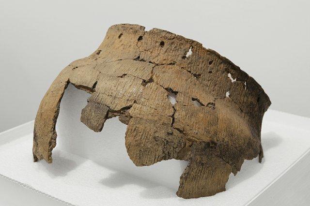Selkirk Pot (Ealf-46/W1) University of Winnipeg Anthropology Collections. Photo by Karen Asher.