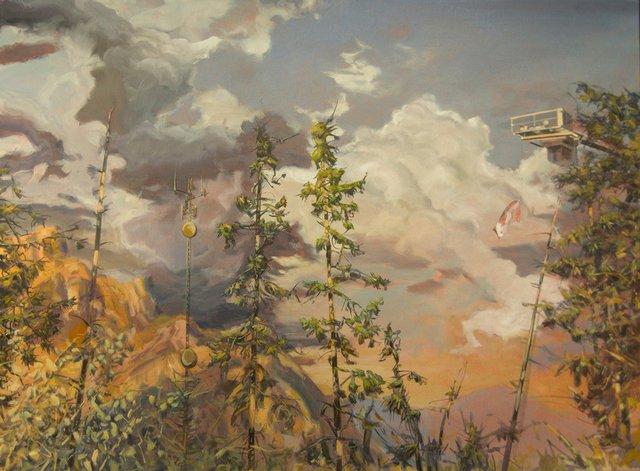 "Jim Davies ""Lodgepole pine confrontation,"" nd"