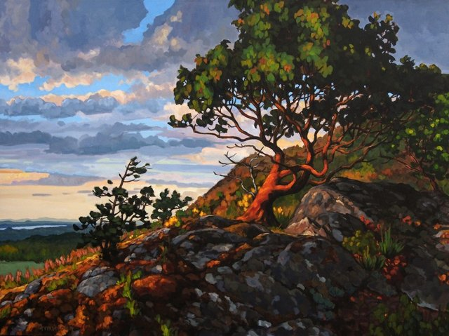 """Steven Armstrong, """"From My Perch Among the Clouds,"""" 2017"""
