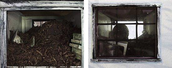 """Susan Collacott, """"Bog House,"""" 2010"""