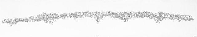 "Shuvinai Ashoona, ""Bird Bones,"" 2015"