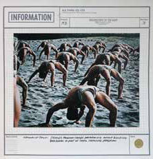 "N.E. Thing Co. Ltd. Information Sheet for ""Celebration of the Body,"" 1976, photographs mounted on paper, 111.8 x 111.8 cm. Photo courtesy Iain Baxter&."
