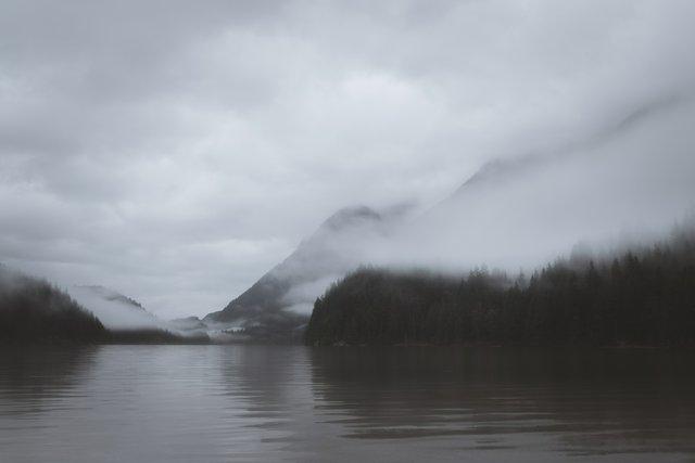 """Vitor Leão, """"The Fog,"""" 2016"""
