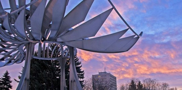 Public Art at the University of Calgary