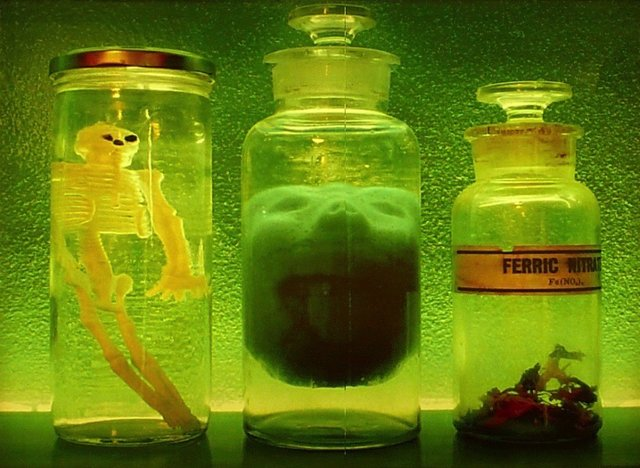"Lorne Beug, ""Green & Gold Lab,"" 2011"