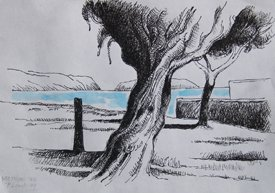 """Trees by the Sea, Methoni"""