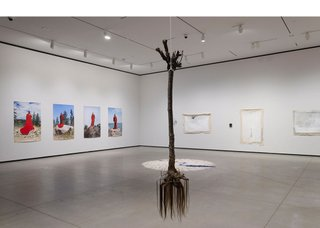 """""""Li Salay,"""" 2018, installation view at the Art Gallery of Alberta (photo by Charles Cousins)"""