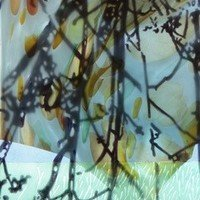 """Brenda Malkinson, """"The Surface of Things: Chasing Light,"""""""