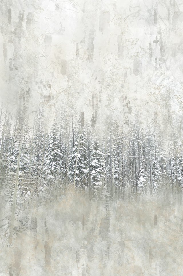 "Kate Mountford, ""Winter Trees,"" 2017"