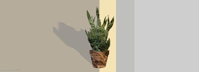 "Alana Bartol & Mia Rushton + Eric Moschopedis, ""a hint of perennial magic lingers in its fingertips,"" 2018"