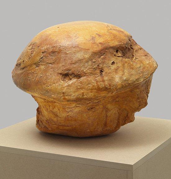 """Robin Peck, """"Sculpture (Crania 61),"""" 2016-2017"""