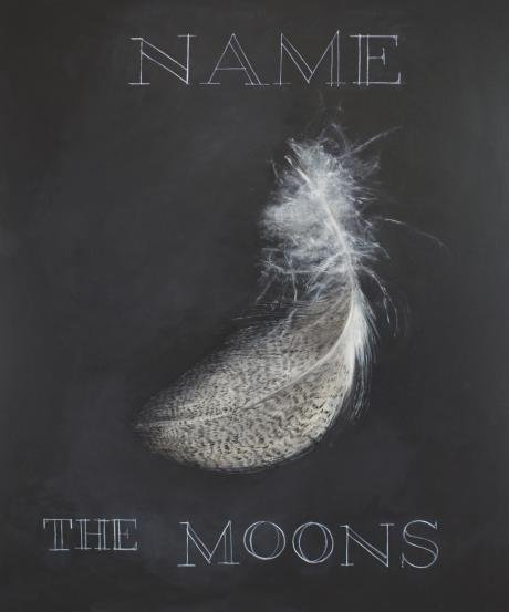 "Amy-Claire Huestis, ""Name the Moons,"" 2018"