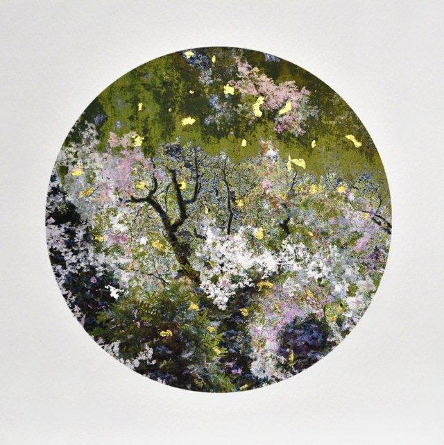 "Gabriela Garcia-Luna, ""Garden of Skin,"" 2018"