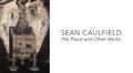 """Sean Caulfield, """"The Flood (detail), 2016"""