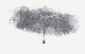 """Christine Kirouac, """"Weeping Birch (from the After Winter, Before Spring Series), 2018"""
