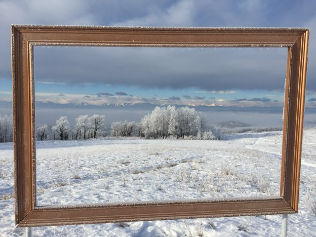 leighton art centre christmas in the country art sale 2018 - Christmas In The Country