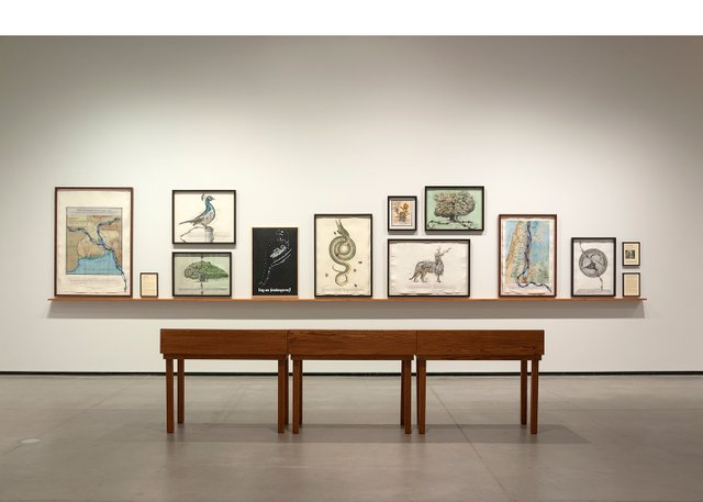 "Reena Saini Kallat, ""Hyphenated Lives,"" installation view at Art Gallery of Alberta, Edmonton (photo by Charles Cousins)"
