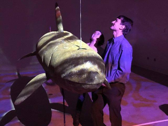 "Colton  Hash  with  his  life-size  juvenile  orca  sculpture ""Resonant  Disintegration"" Nov  2017  (photo by John  Threlfall)"