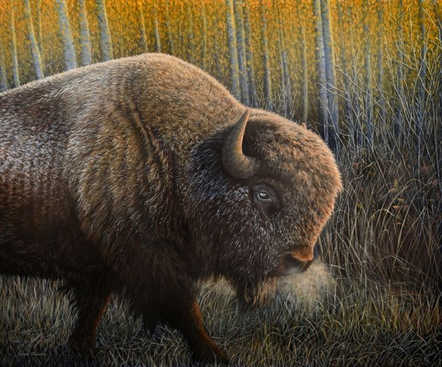 "Regan Johnston, ""Dawn of the Bison,"" 2018"