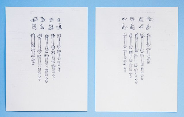 """Janet Shaw-Russell, """"To Have"""" (left) and """"To Hold,"""" 2018"""