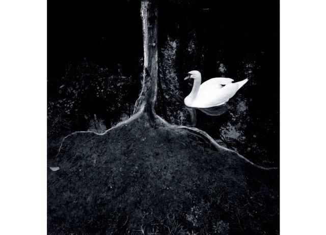 "Arthur Nishimura, ""Mythical Landscapes: La Rochelle,"" 1983"