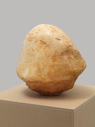 """Robin Peck, """"Sculpture (Crania 112),"""" 2009"""