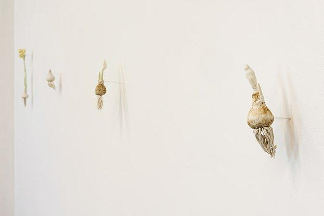 """Ruth Chambers, """"Bulbs,"""" nd"""