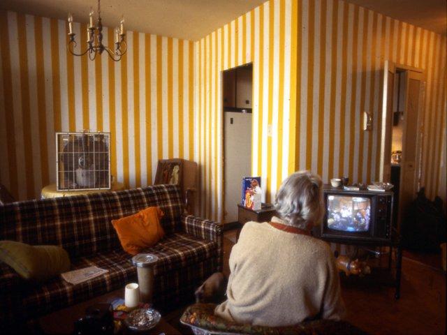 """Daniel Buren, """"Souvenir Photo: Limited Time Only!,"""" 1981"""