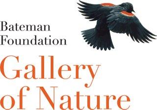 Bateman-Gallery-Nature-RGB-Vert.jpg