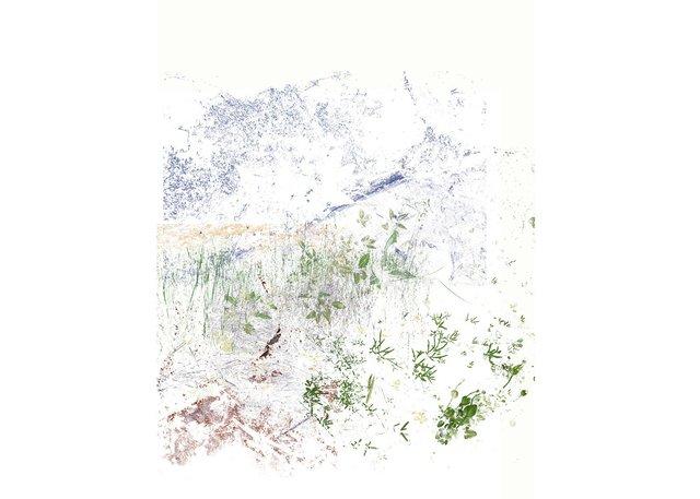 "Gabriela Garcia-Luna, ""Traces I,"" 2019"