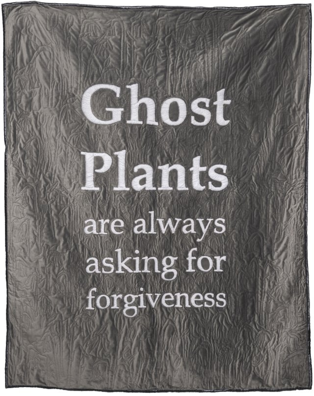 "Alyssa Ellis, ""Ghost Plants,"" 2018"