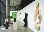 """Form-Space-Concept-Metaphor: Contemporary Alberta Sculpture"""