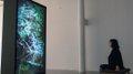 "Leila Sujir, ""installation image of Forest Breath,"" 2018"