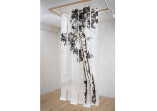 "Jane Everett, ""Birch,"" 2019"