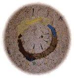 """Circle of Earth"""
