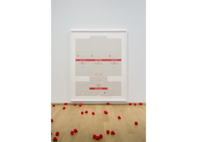 "Puppies Puppies (Jade Kuriki Olivo), ""Human Blood Transportation Box (Canadian Blood Services),"" 2019"