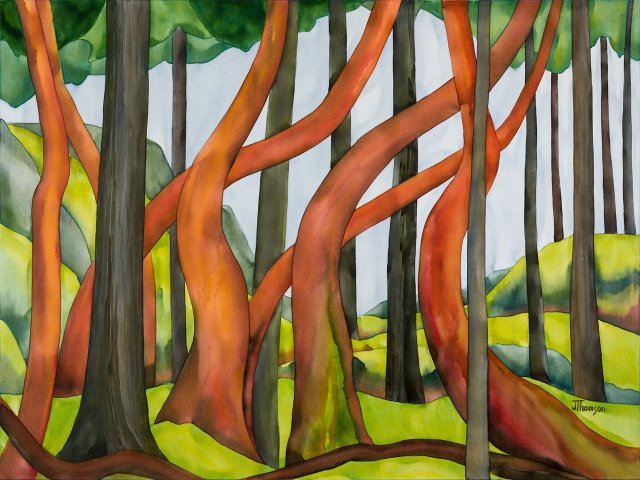 "Greg Glover, ""Lone Tree Hill - Arbutus Overtaken by Fir,"" 2019"