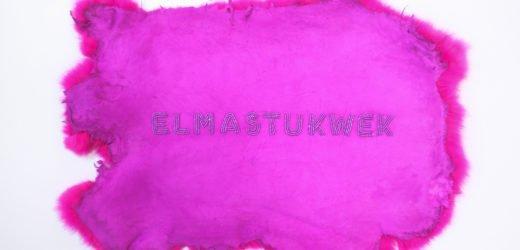 """Meagan Musseau, """"[re]claim: elmastukwek,"""" 2018"""