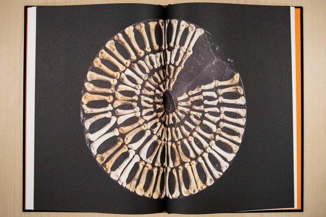 Maureen Gruben's QULLIQ | 'A Handful of Stories' Project