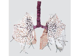 "Karina Bergmans, ""Lungs,"" 2013"