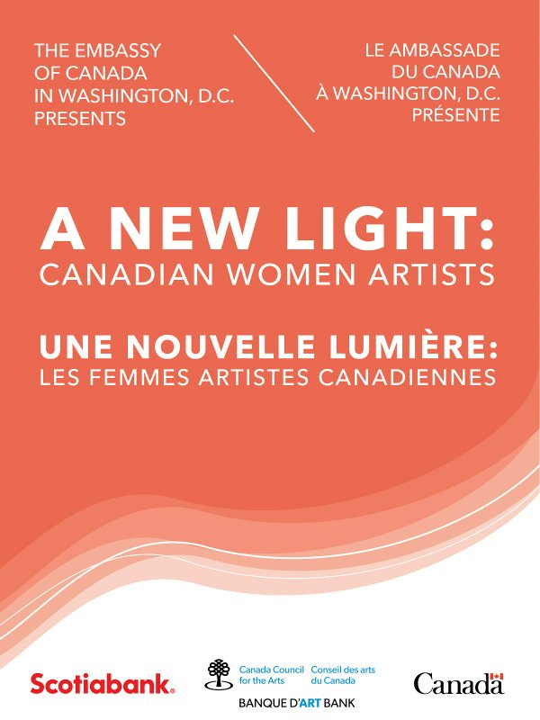 promo image A New Light-01.jpg